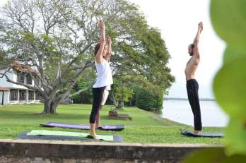Yoga Retreat and Meditation