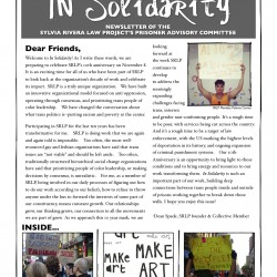 In Solidarity 2013 FINAL