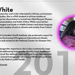 Bali White Trans 100