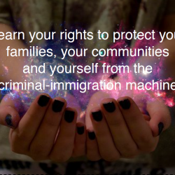 Know Your Rights Workshop on Immigration