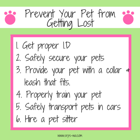 Prevent Your Pet from Getting Lost blog tag (1)