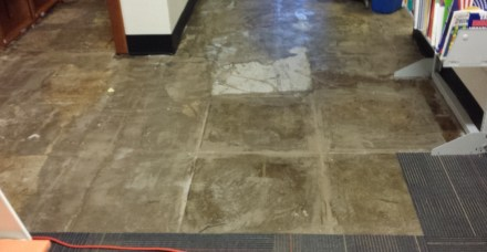 flooded floor post-clean-up