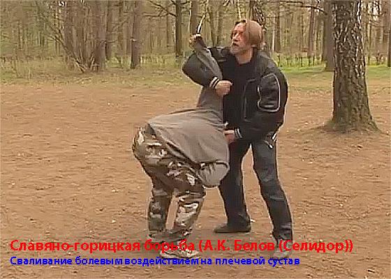 славяно-горицкая-борьба