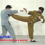Малоизвестные уроки по Школе «Чой» — журнал «Спортивная Жизнь России» 1992-1993