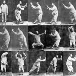 Виды боевых искусств. Часть 5. Стили Ушу.