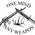 Рукопашный бой спецназа: MCMAP — Marine Corps Martial Arts Program (Программа подготовки морских пехотинцев по боевым искусствам) (Часть 2)