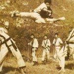 Тхэквондо — Пхумсэ (Часть 2) — Юдан пхумсэ
