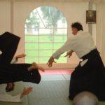 Aikido Falling Tips (Видеосоветы о падении в айкидо) [ENG] [Айкидо, CamRip]