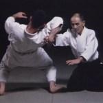 Полный набор техник Айкидо Ёшинкан. 3 dvd диска [2001, Айкидо, DVD5]