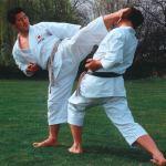 Семинар Масао Кагава (часть 3 из 3) [2007, Шотокан каратэ-до, DVDRip, RUS] (Видеоурок)
