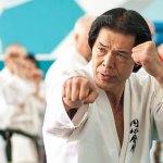 Метод Сабаки / Sabaki Method [Enshin Karate, VHSRip]
