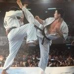 Энциклопедия Киокушинкай Каратэ / Kyokushin Karate Encyclopedia / IKO1-Mацуи / [1999, Киокушин каратэ, VHSRip]