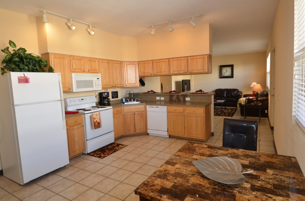 1 Bedroom Apartments Near. 1 Bedroom Apartments Near Usf  50  Creative Ideas For One Bedroom