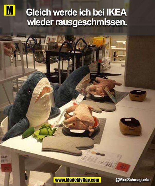 Sagoskatt Limitierte Kuscheltiere Kollektion Ikea Ikea Schweiz