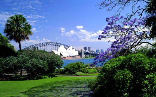 Royal botanic gardens_Sydney