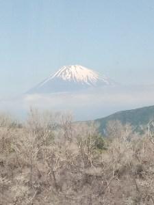 Mt. Fuji Floating on a Cloud