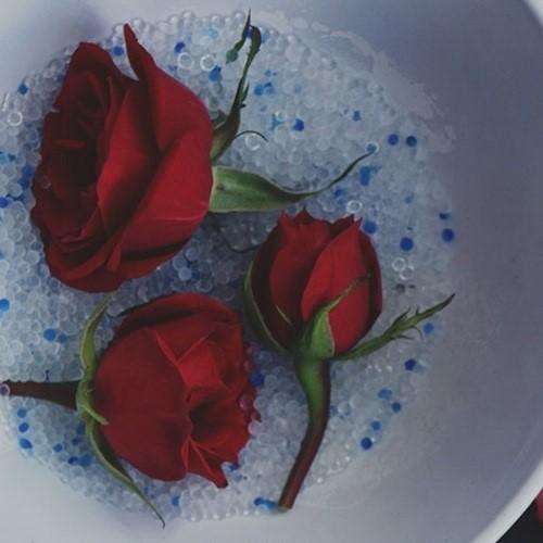 Mixed Blue Silica Gel ซิลิกาเจล ขาวผสมน้ำเงิน