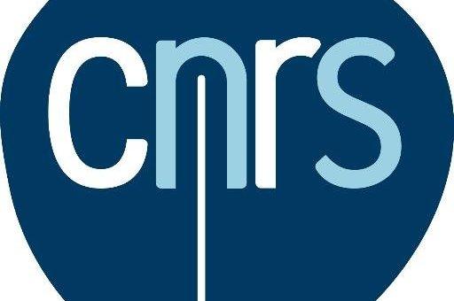 Elections au Comité National du CNRS 2021