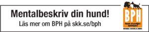 Klubbtidningsannons_BPH_rink_farg