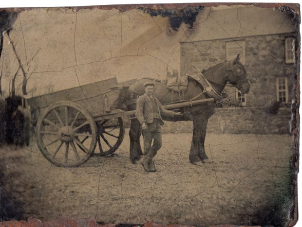 Agricultural worker with horse-drawn wooden cart Unidentified photographer Date unknown ¼ plate tintype Sheila Masson Collection The pose and subject matter of this image suggest that this man was particularly proud of his large draught horse and cart. Furthermore, ¼ plate tintypes were relatively uncommon and would have been more expensive than the typical 1/6th plates sold in Britain. Note the crazing of the collodion surface across the plate and the bubbling and rusting around the outside perimeter.