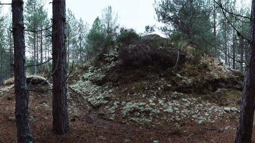 Chrystel Lebas, Re-visiting Culbin Sands dunes Plate n°1248, Culbin, December 2013. 57°39.365'N 3°37.883'W
