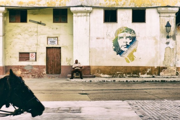 Horse entering the frame from the left and asecurity guard seated next to an image of Che Guevara painted on a wall in Havana,