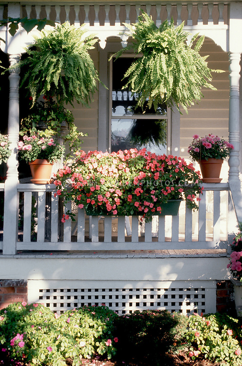 Garden Box Gardening