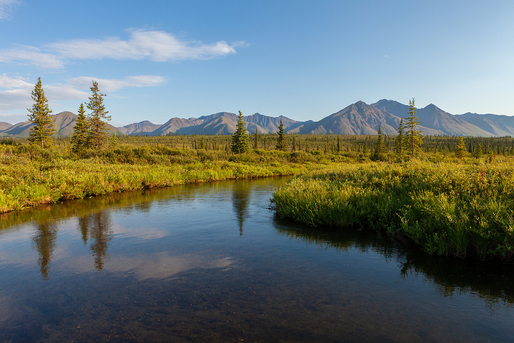 100716kbp286 tif   Kurt Budliger Photography scenic photograph of a small tundra stream with mountain backdrop  interior  Alaska