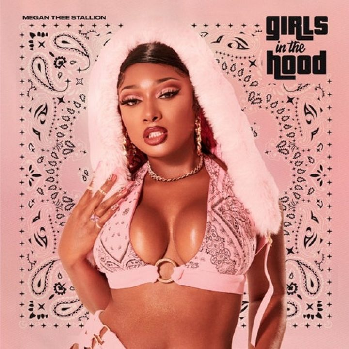 Megan thee stallion girls in the hood