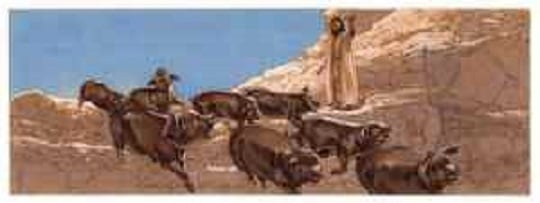 Image result for gadarene swine story Bible