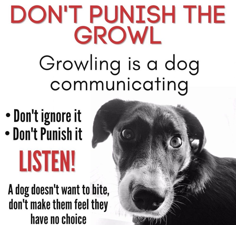Don't push the growl