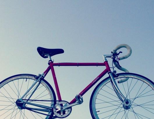 Red Race beim Rad Race: Wer will es mit meinem Specialized Langster und mir aufnehmen?