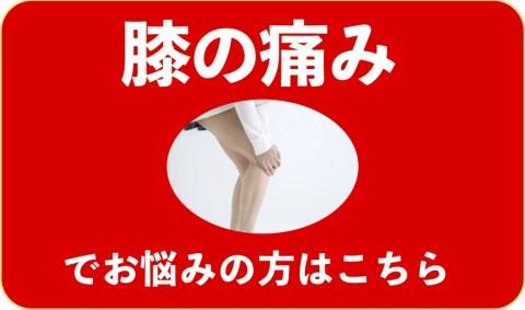膝の痛みでお悩みの方はこちら