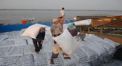 Gại Việt từng bị ngấm đòn đau vì hạ giá thấp