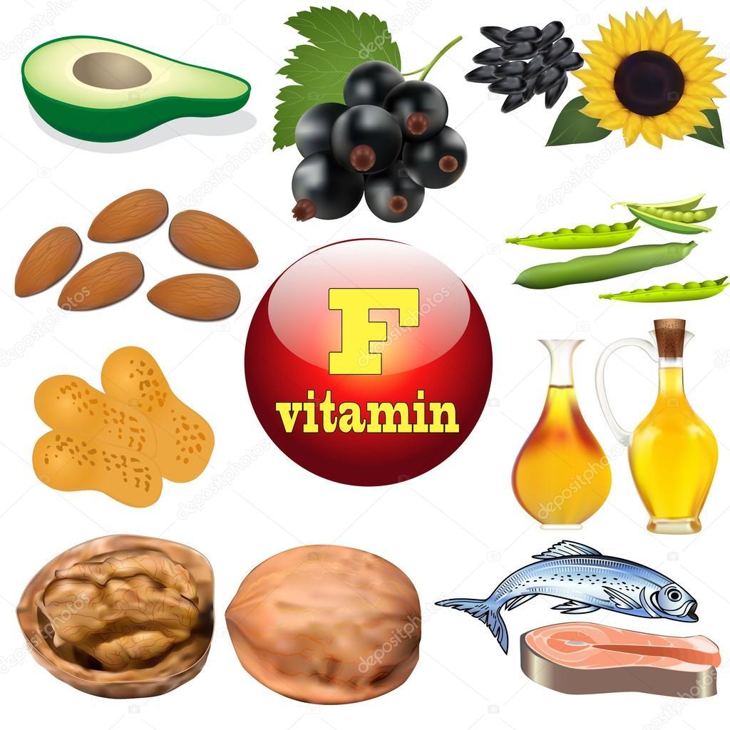 Vitamina F Pianta Contenuti E Prodotti Di Origine Animale