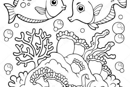 arrecife de coral dibujo arrecifes de coral » Full HD MAPS Locations ...