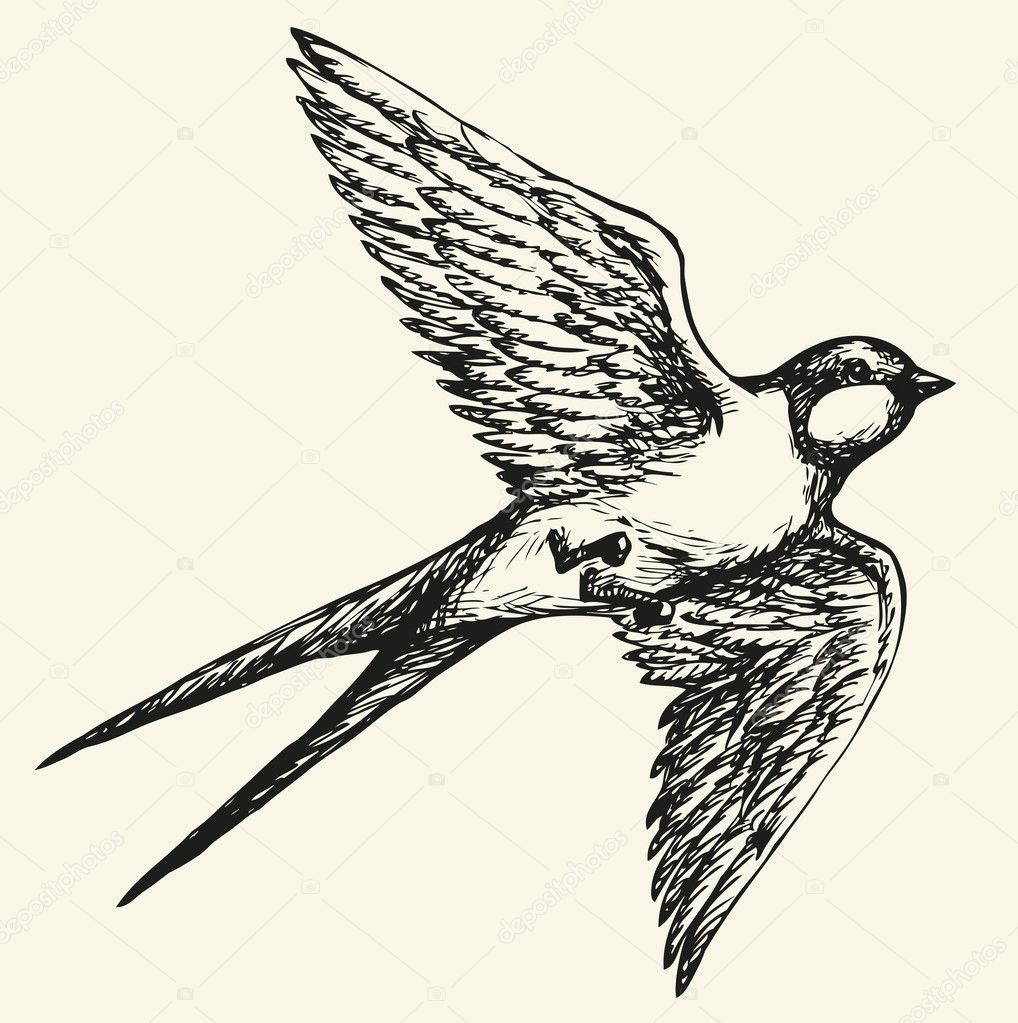 Áˆ Bird Cartoon Stock Pictures Royalty Free Bird Drawing Download On Depositphotos