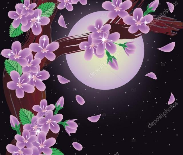 Cherry Blossoms On Night Sky Background Vector Illustration Stock Vector