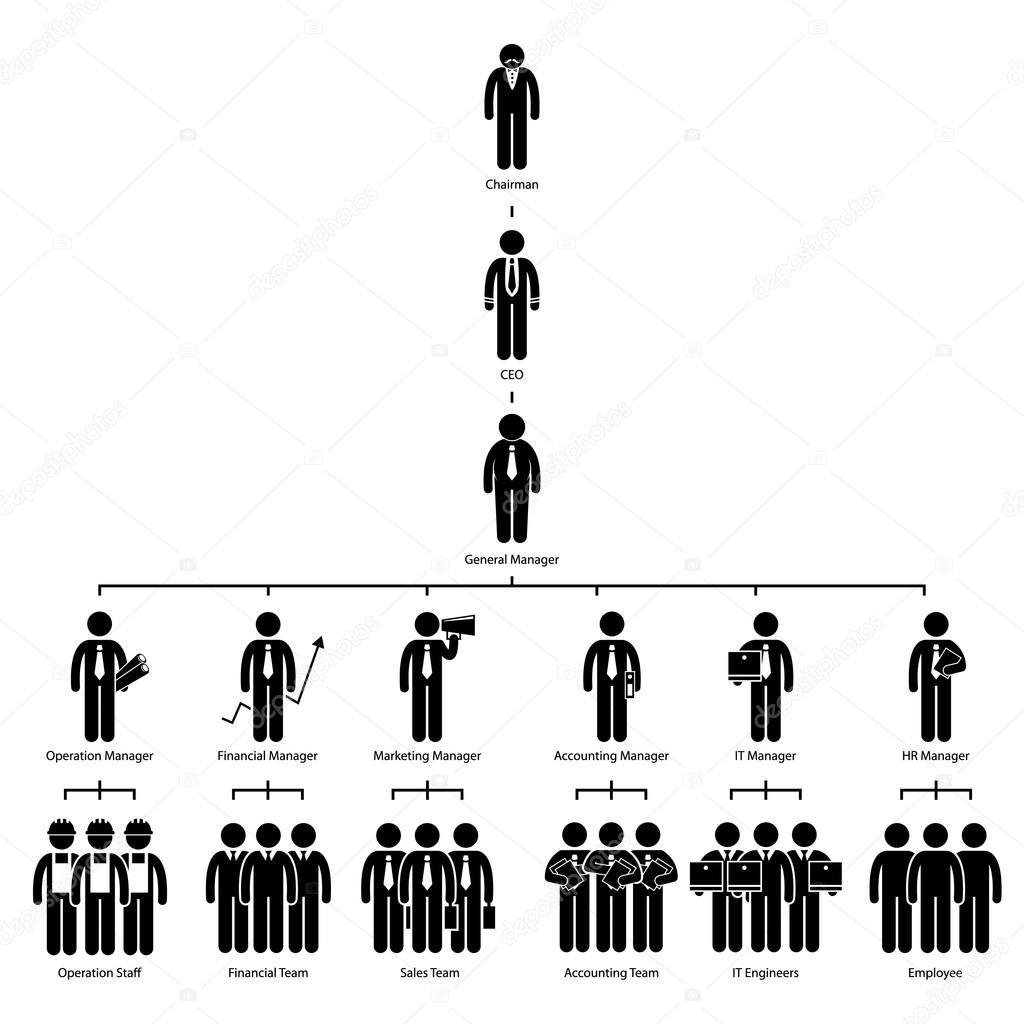 Organisation Diagramm Firma Unternehmenshierarchie