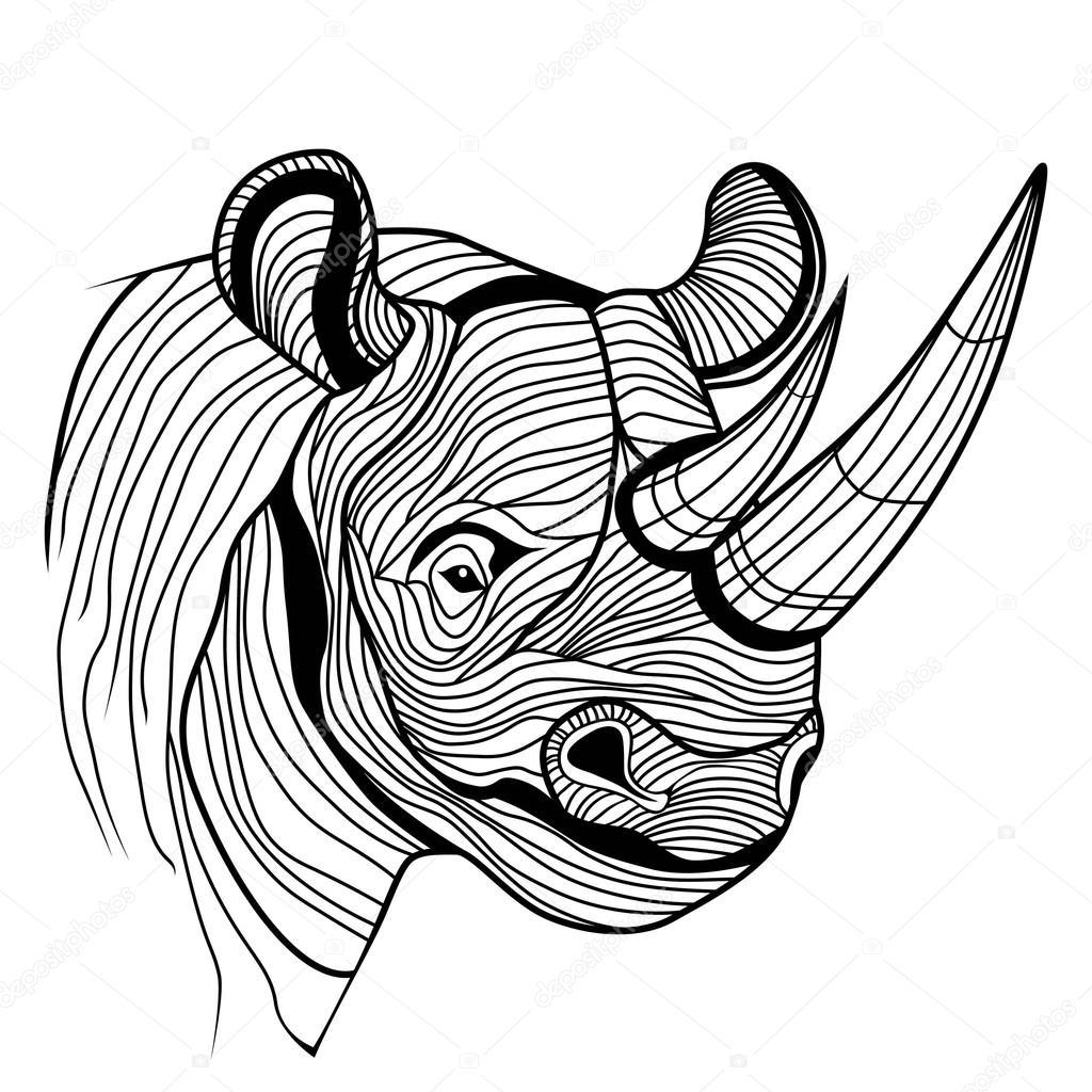 Cabeca Do Animal Rinoceronte Rhinoceros