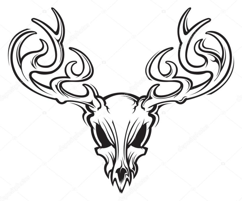 deer skull pages coloring pages