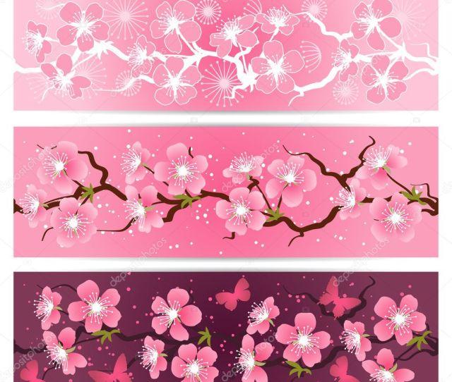 Cherry Blossom Flowers Banner Set Stock Vector
