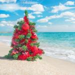 Christmas Tree On The Sea Beach Christmas Vacation Concept