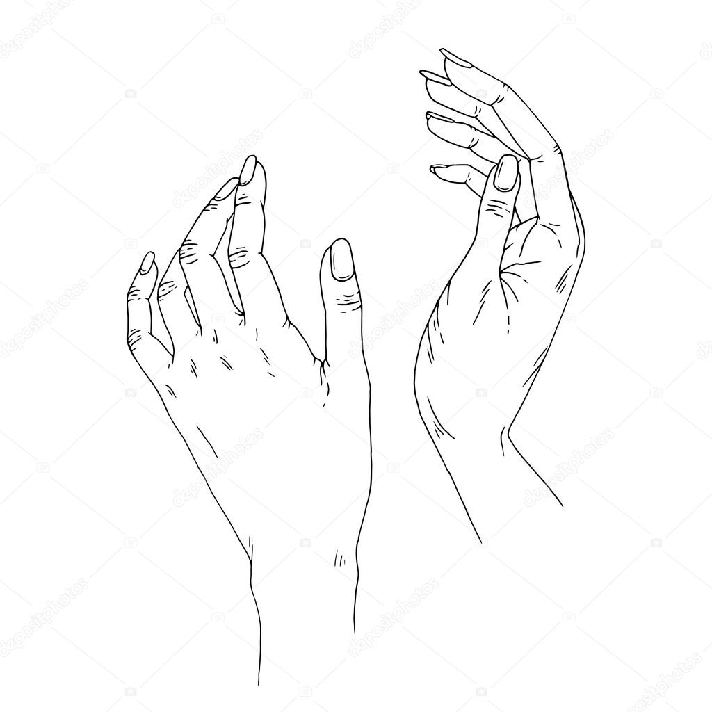 Female Hands Vector Hand Drawn Illustration