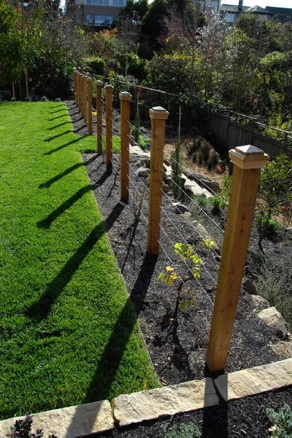 contemporary landscape by Lazar Landscape Design and Construction