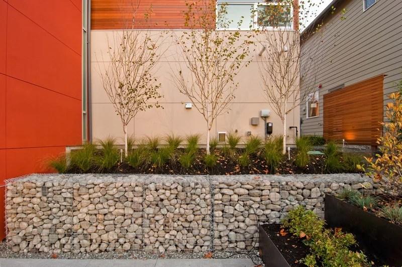 modern landscape by BUILD LLC