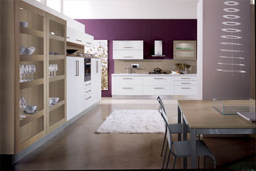 modern kitchen design by san francisco kitchen and bath european