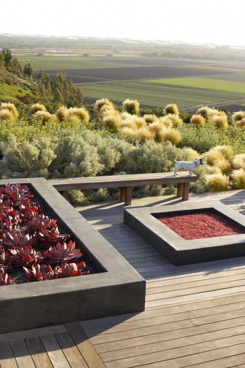 asian landscape by Jeffrey Gordon Smith Landscape Architecture