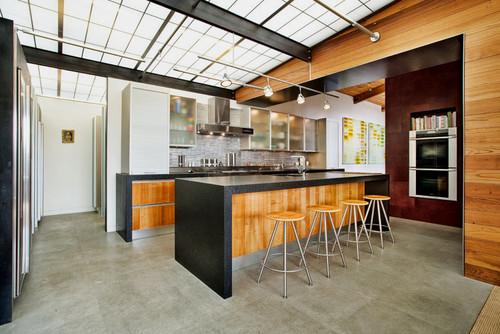 Lovell Residence modern kitchen