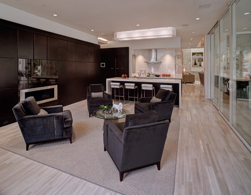 2012 New American Home contemporary living room